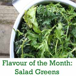 saladgreensbutton